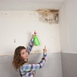 San Francisco-Mold-Remediation
