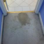 San Francisco-Vomit-1-before-carpet