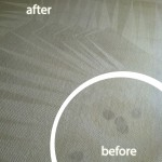 San Francisco-Wine-Stain-Carpet-Cleaning