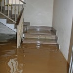 San Franciscoflood-in-house