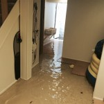 San Franciscohome-flood-damage-repair